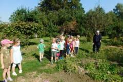 2020-jasien-mali-ogrodnicy-1