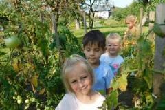 2020-jasien-mali-ogrodnicy-10