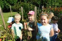 2020-jasien-mali-ogrodnicy-11