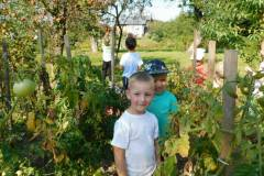 2020-jasien-mali-ogrodnicy-12