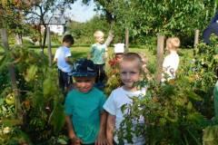 2020-jasien-mali-ogrodnicy-13