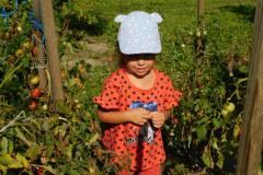 2020-jasien-mali-ogrodnicy-14