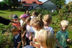 2020-jasien-mali-ogrodnicy-2