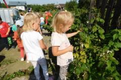 2020-jasien-mali-ogrodnicy-24