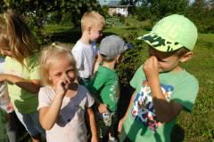 2020-jasien-mali-ogrodnicy-3