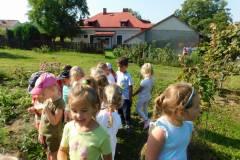 2020-jasien-mali-ogrodnicy-4