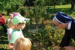 2020-jasien-mali-ogrodnicy-7
