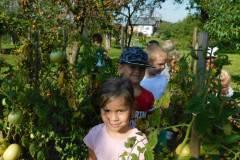 2020-jasien-mali-ogrodnicy-9