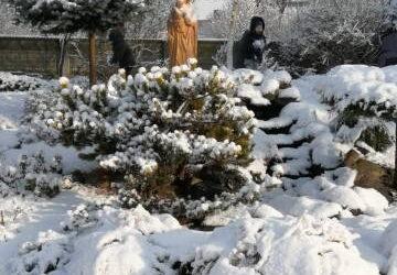 Zima wGostyniu