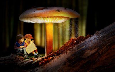 Wyobraźnia dziecka, aświat fikcji irzeczywistości