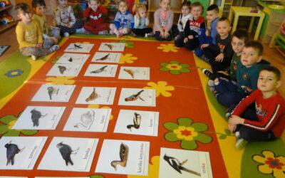 Mali Ornitolodzy